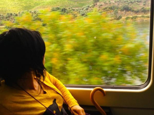 Viagem ao Pinhão